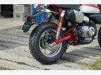 2019 Honda Monkey for sale 200696987