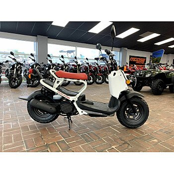 2019 Honda Ruckus for sale 200709937