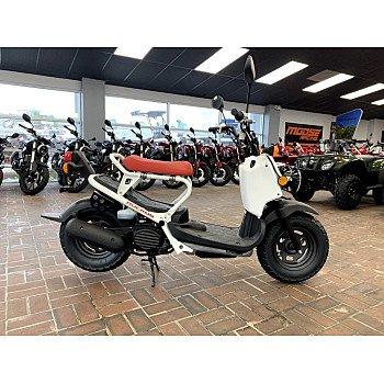 2019 Honda Ruckus for sale 200709939