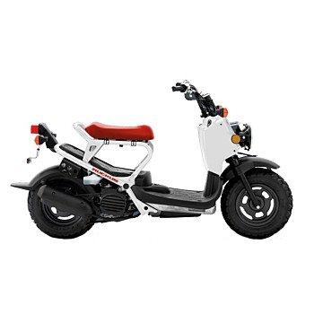 2019 Honda Ruckus for sale 200851660