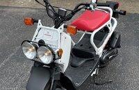 2019 Honda Ruckus for sale 201059616