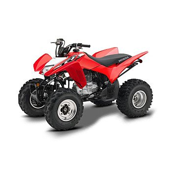2019 Honda TRX250X for sale 200740114