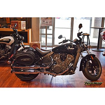 2019 Indian Scout for sale 200624282