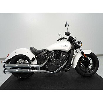 2019 Indian Scout for sale 200630630