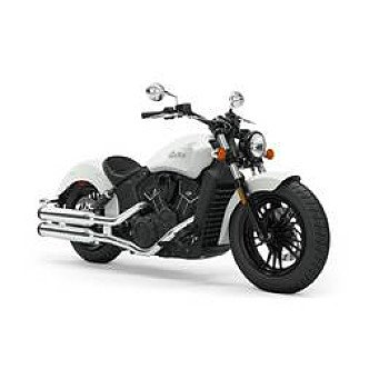 2019 Indian Scout for sale 200633160