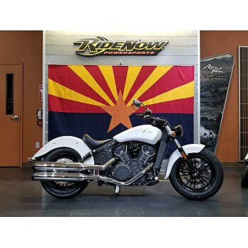 2019 Indian Scout for sale 200657123