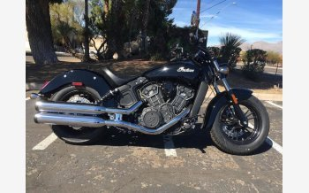 2019 Indian Scout for sale 200662256