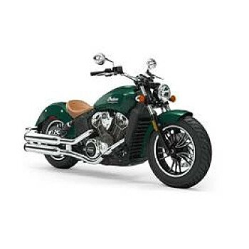 2019 Indian Scout for sale 200623322