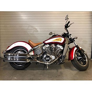2019 Indian Scout for sale 200735413