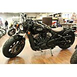 2019 Indian Scout for sale 200754212