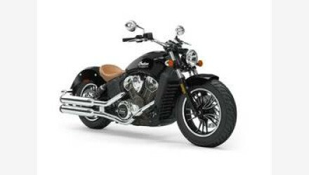 2019 Indian Scout for sale 200757802