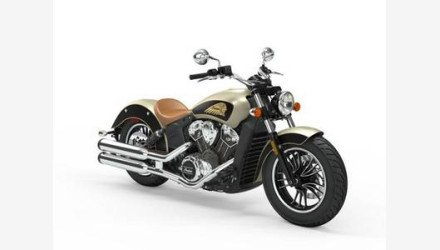 2019 Indian Scout for sale 200825221