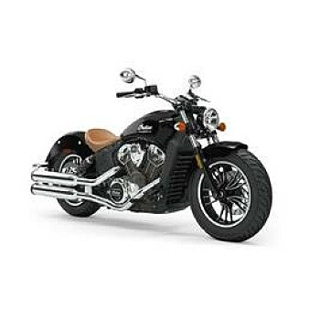 2019 Indian Scout for sale 200830328