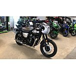 2019 Kawasaki W800 for sale 200725378