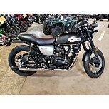 2019 Kawasaki W800 for sale 200862814