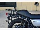 2019 Kawasaki W800 for sale 201048659