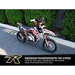 2019 SSR SR110 for sale 200939012