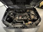 2019 Subaru WRX for sale 101546700