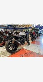 2019 Suzuki SV650 for sale 200975317