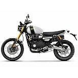 2019 Triumph Scrambler for sale 200697198