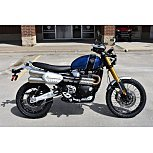 2019 Triumph Scrambler for sale 200723737