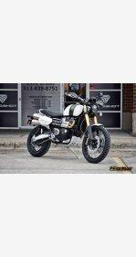 2019 Triumph Scrambler for sale 200734857