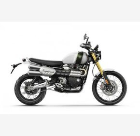 2019 Triumph Scrambler for sale 200736749