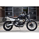 2019 Triumph Scrambler for sale 200753727