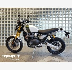 2019 Triumph Scrambler for sale 200908710