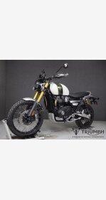 2019 Triumph Scrambler for sale 200984044