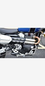 2019 Triumph Scrambler for sale 201018265