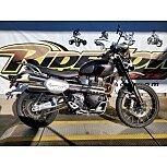 2019 Triumph Scrambler for sale 201031000