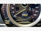 2019 Triumph Scrambler for sale 201080951