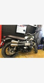 2019 Triumph Street Scrambler for sale 200714473