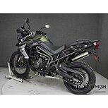2019 Triumph Tiger 800 for sale 200803206