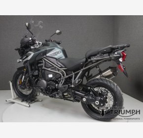 2019 Triumph Tiger Explorer for sale 200708131
