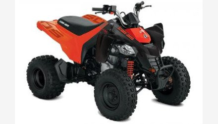 2020 Can-Am DS 250 for sale 200866479