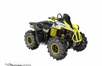 2020 Can-Am Renegade 570 for sale 200924263