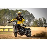 2020 Ducati Scrambler for sale 201026562