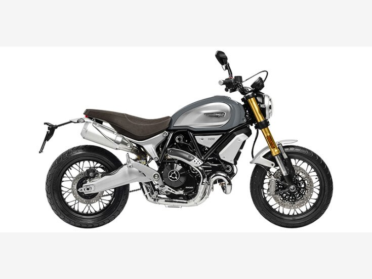 2020 Ducati Scrambler for sale 201031267