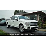 2020 Ford F150 for sale 101629324
