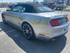 2020 Ford Mustang for sale 101483851