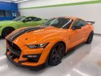 2020 Ford Mustang Shelby GT500 for sale 101542195