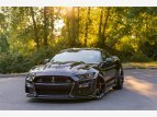 2020 Ford Mustang Shelby GT500 Coupe for sale 101555497