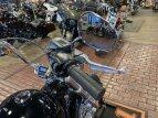 2020 Harley-Davidson Softail Standard for sale 201063556