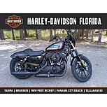 2020 Harley-Davidson Sportster for sale 200794287