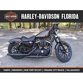 2020 Harley-Davidson Sportster Iron 883 for sale 200794290