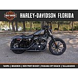 2020 Harley-Davidson Sportster for sale 200796145