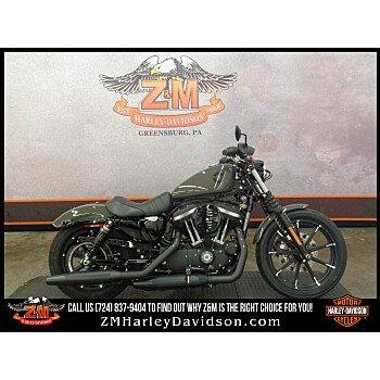 2020 Harley-Davidson Sportster Iron 883 for sale 200800135