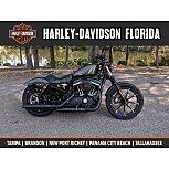 2020 Harley-Davidson Sportster Iron 883 for sale 200803259